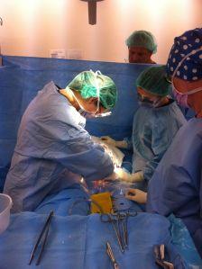 Love my job as a GP obstetrician